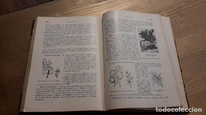 Libros antiguos: PRINCIPIOS DE AGRICULTURA. TÉCNICA AGRÍCOLA E INDUSTRIAL Y ECONOMÍA.BARTOLOME DARDER PERICÁS - Foto 4 - 112998519