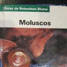 Libros antiguos: MOLUSCOS. MOLUSCOS ACUATICOS Y TERRESTRES 660 ESPECIES Y 740 FOTOS EN COLOR.ED.BLUME. Lote 113323311