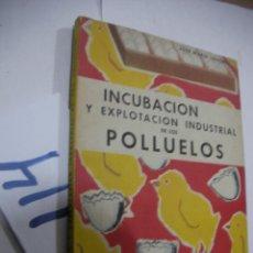 Libros antiguos: ANTIGUO LIBRO - INCUBACION Y EXPLOTACION INDUSTRIAL DE LOS POLLUELOS. Lote 113363711