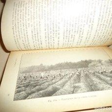 Libros antiguos: AGRICULTURA LOS PRODUCTOS COLONIALES 1912. Lote 114711011