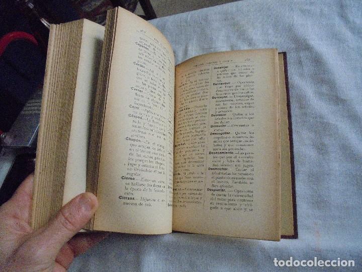 Libros antiguos: TRATADO DE JARDINERIA Y FLORICULTURA.HISTORIA DE LA JARDINERIA.PEDRO JULIAN MUÑOZ Y RUBIO.MADRID 193 - Foto 5 - 114934859