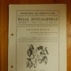Libros antiguos: HOJAS DIVULGADORAS MINISTERIO AGRICULTURA - 1946 Nº 13 - AÑO XXXVIII - FRAMBUESA -. Lote 115092267