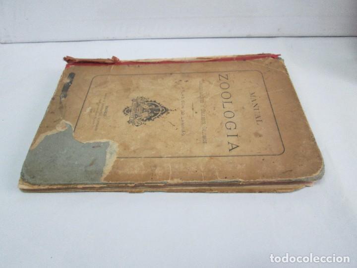 Libros antiguos: MANUAL DE ZOOLOGIA. IGNACIO BOLIVAR Y SALVADOR CALDERON. 1885. VER FOTOGRAFIAS - Foto 4 - 115547079