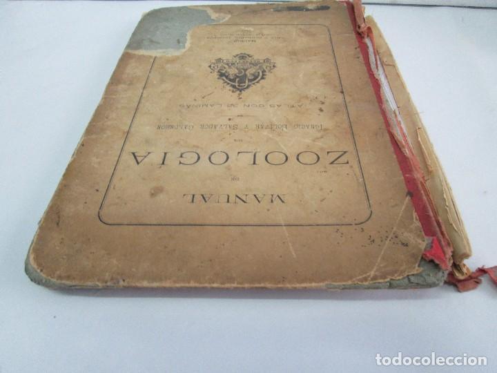 Libros antiguos: MANUAL DE ZOOLOGIA. IGNACIO BOLIVAR Y SALVADOR CALDERON. 1885. VER FOTOGRAFIAS - Foto 5 - 115547079