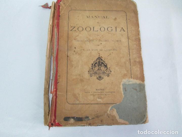 Libros antiguos: MANUAL DE ZOOLOGIA. IGNACIO BOLIVAR Y SALVADOR CALDERON. 1885. VER FOTOGRAFIAS - Foto 6 - 115547079
