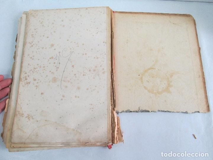 Libros antiguos: MANUAL DE ZOOLOGIA. IGNACIO BOLIVAR Y SALVADOR CALDERON. 1885. VER FOTOGRAFIAS - Foto 26 - 115547079