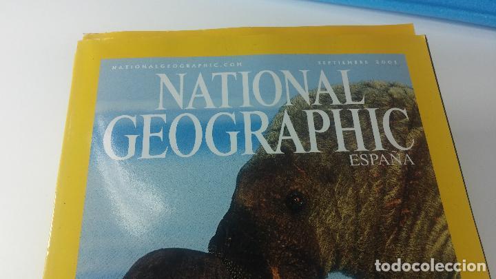 Libros antiguos: Lote de 13 revistas National Geografic - Foto 3 - 115613643