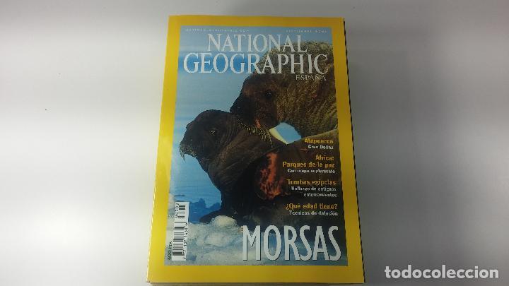 Libros antiguos: Lote de 13 revistas National Geografic - Foto 14 - 115613643