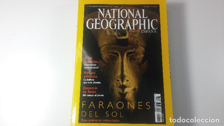 Libros antiguos: Lote de 13 revistas National Geografic - Foto 19 - 115613643