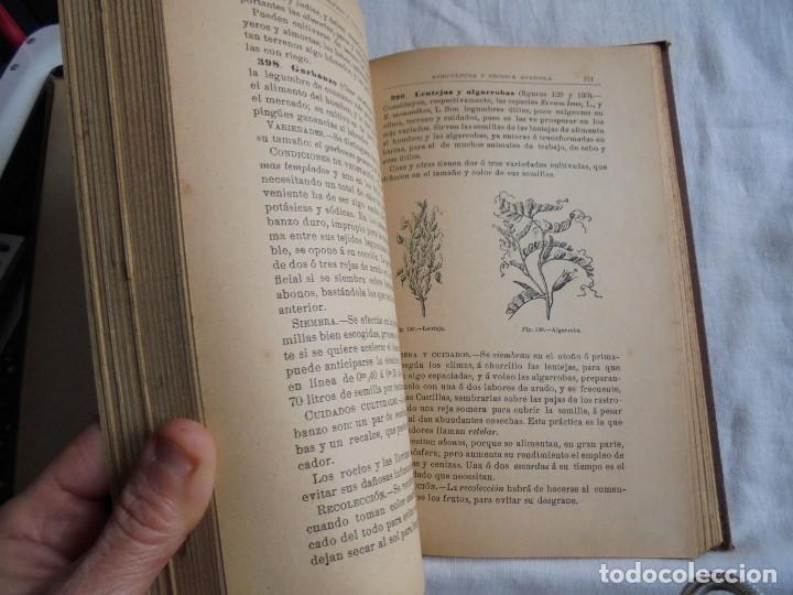 Libros antiguos: ELEMENTOS DE AGRICULTURA Y TECNICA AGRICOLA E INDUSTRIAL.-1ª PARTE.MADRID 1908 - Foto 8 - 115754051