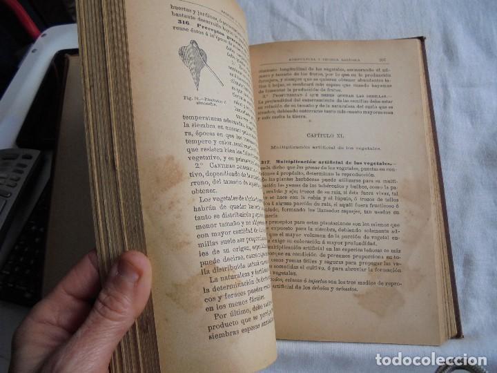 Libros antiguos: ELEMENTOS DE AGRICULTURA Y TECNICA AGRICOLA E INDUSTRIAL.-1ª PARTE.MADRID 1908 - Foto 9 - 115754051