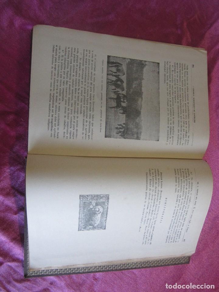 Libros antiguos: PRIMER CONGRESO VETERINARIO DE ZOOTECNIA TOMO 2 - Foto 14 - 115869619