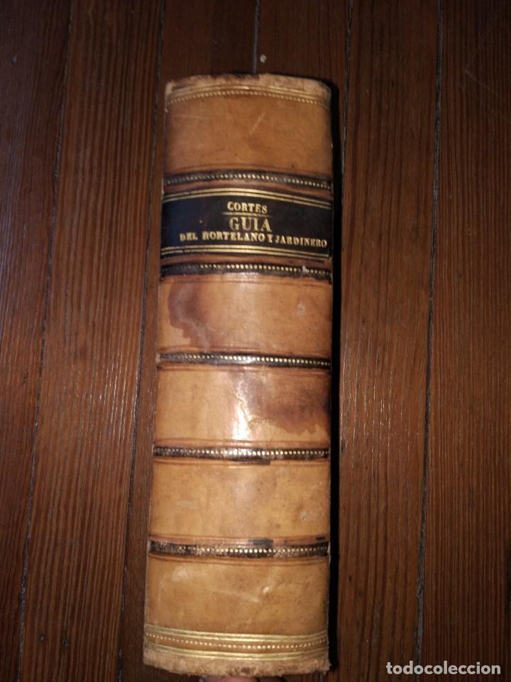 NOVÍSIMA GUÍA DEL HORTELANO, JARDINERO Y ARBOLISTA. CON 555 GRABADOS. BALBINO CORTÉS. 1885 (Libros Antiguos, Raros y Curiosos - Ciencias, Manuales y Oficios - Bilogía y Botánica)