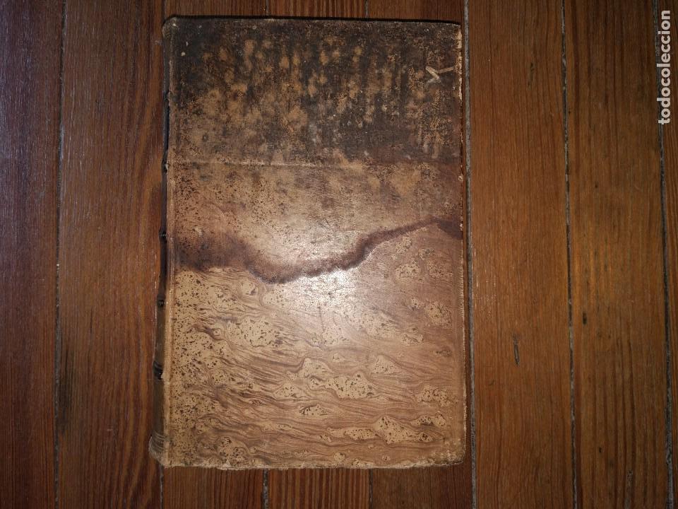 Libros antiguos: Novísima Guía del Hortelano, Jardinero y Arbolista. Con 555 grabados. Balbino Cortés. 1885 - Foto 8 - 117736099