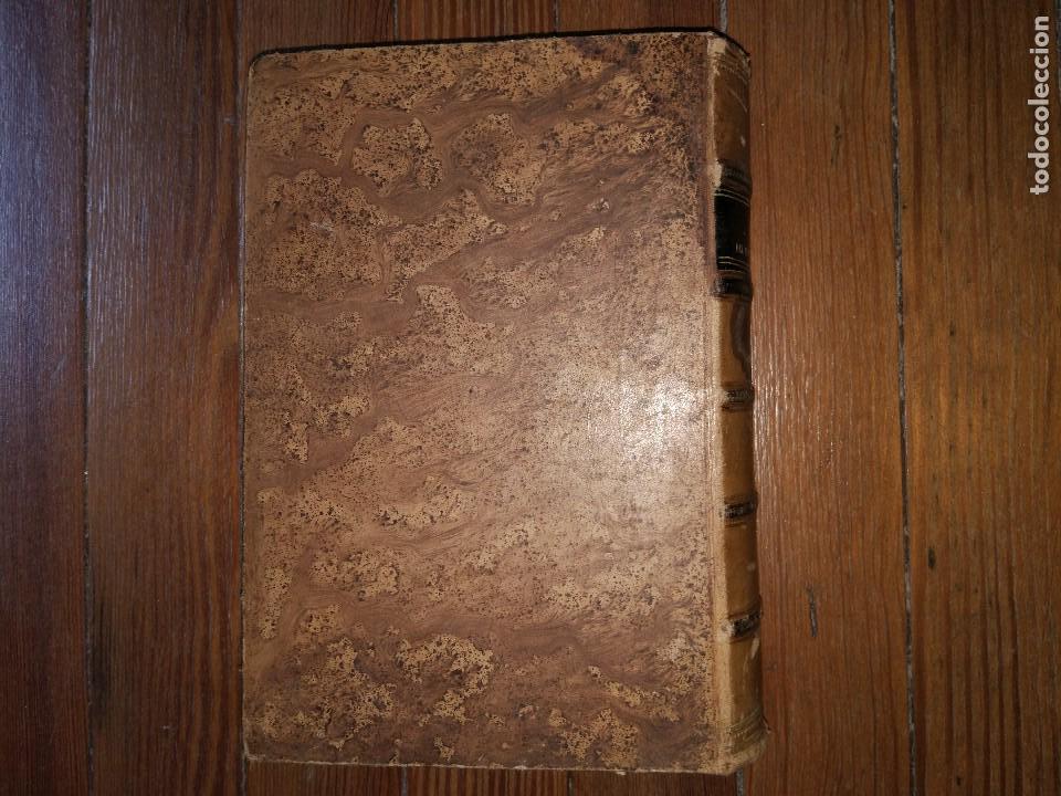 Libros antiguos: Novísima Guía del Hortelano, Jardinero y Arbolista. Con 555 grabados. Balbino Cortés. 1885 - Foto 7 - 117736099