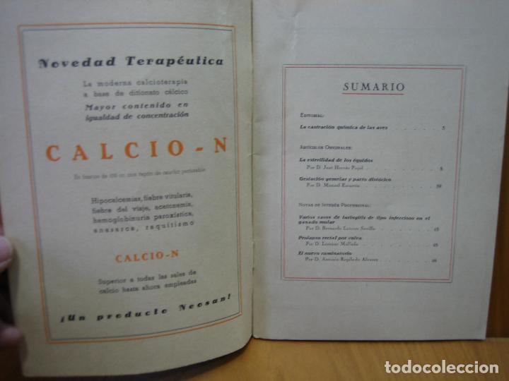 Libros antiguos: Revista veterinaria Noosan - Foto 2 - 117984963