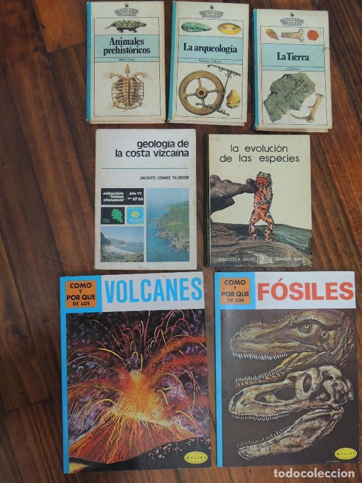 LOTE 7 LIBROS GEOLOGIA (Libros Antiguos, Raros y Curiosos - Ciencias, Manuales y Oficios - Paleontología y Geología)