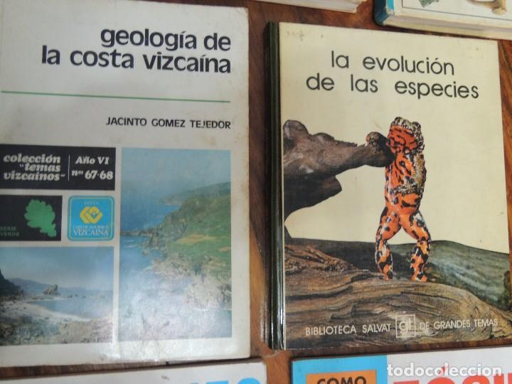 Libros antiguos: lote 7 libros geologia - Foto 3 - 119548279