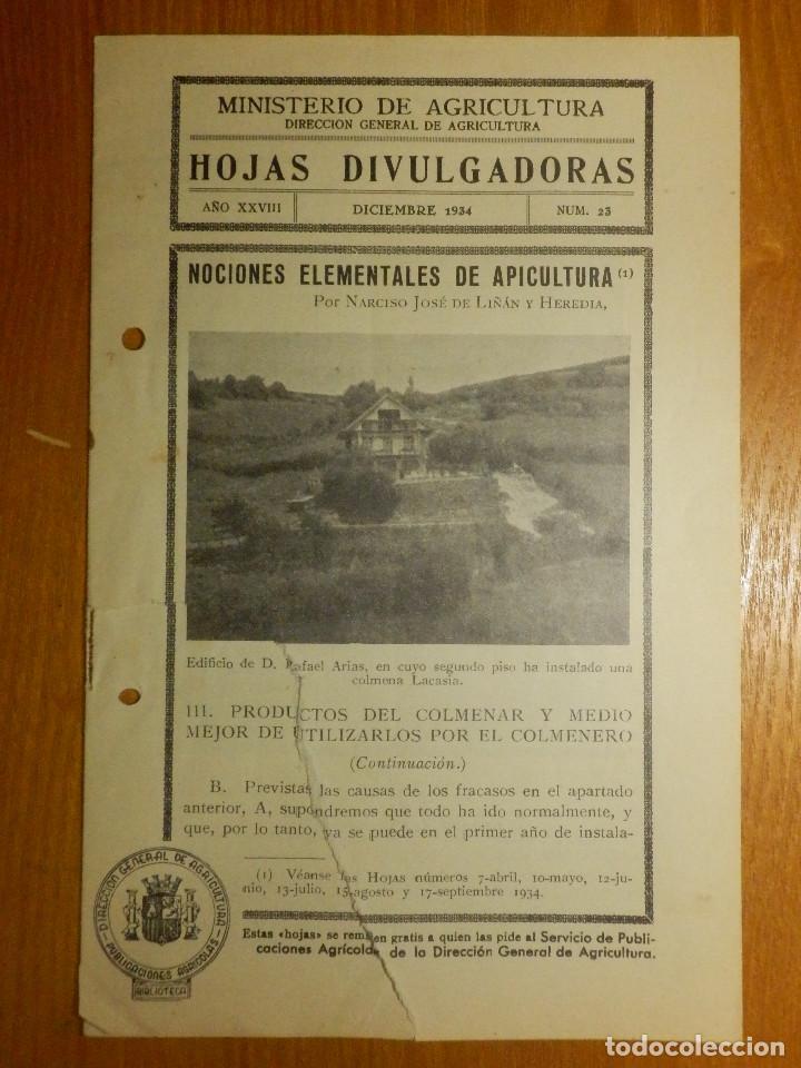 HOJAS DIVULGADORAS MINISTERIO AGRICULTURA 1934 Nº 23 AÑO XXVIII NOCIONES ELEMENTALES DE APICULTURA (Libros Antiguos, Raros y Curiosos - Ciencias, Manuales y Oficios - Bilogía y Botánica)