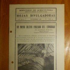 Libros antiguos: HOJAS DIVULGADORAS MINISTERIO AGRICULTURA 1934 Nº 22 AÑO XXVIII CULTIVO FORZADO DEL ESPÁRRAGO. Lote 119776635