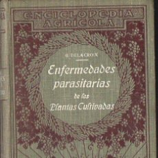 Libros antiguos: DELACROIX - MAUBLANC : ENFERMEDADES DE LAS PLANTAS CULTIVADAS (SALVAT, 1919). Lote 120313979