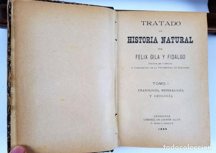 Libros antiguos: TRATADO DE HISTORIA NATURAL. TOMO 1. FELIZ GILA Y FIDALGO. ZARAGOZA. 1899. - Foto 2 - 121027239