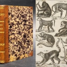 Libros antiguos: 1843 NUEVOS ELEMENTOS DE HISTORIA NATURAL - VALENCIA - 48 LAMINAS. Lote 121509235