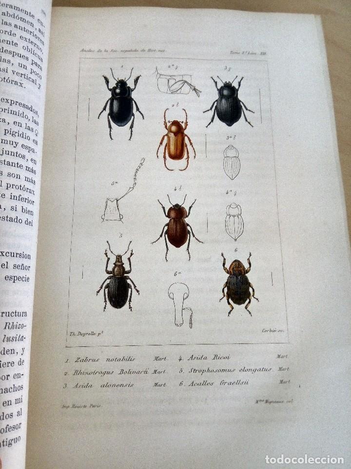 Libros antiguos: Anales de la sociedad española de historia natural. Tomo III. - Foto 2 - 121738835