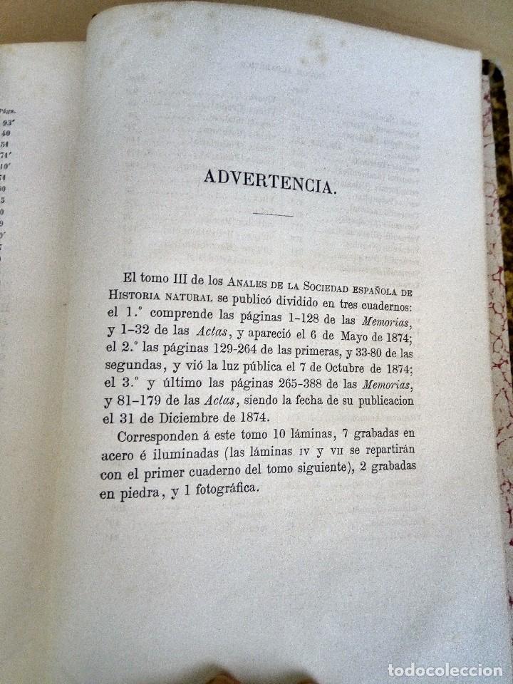 Libros antiguos: Anales de la sociedad española de historia natural. Tomo III. - Foto 7 - 121738835