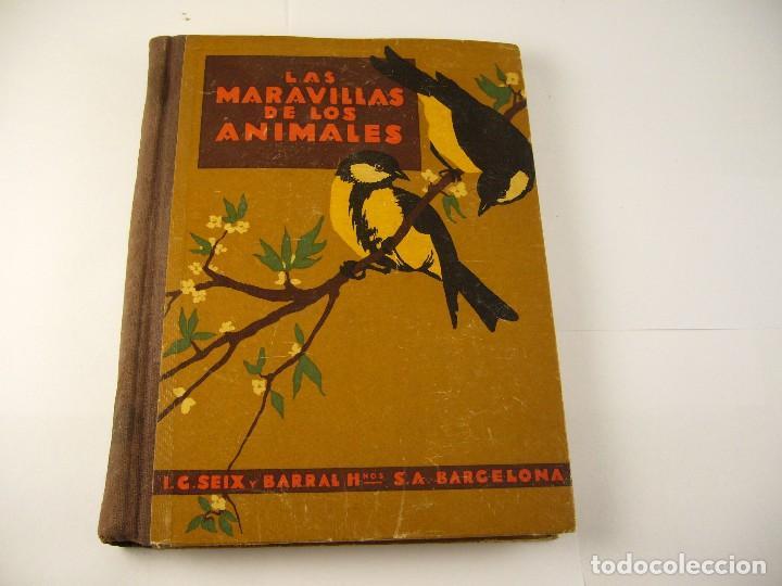 LAS MARAVILLAS DE LOS ANIMALES . AGUSTIN BALLVE. 1931. (Libros Antiguos, Raros y Curiosos - Ciencias, Manuales y Oficios - Bilogía y Botánica)
