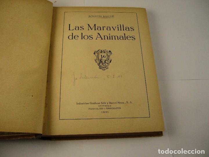 Libros antiguos: LAS MARAVILLAS DE LOS ANIMALES . AGUSTIN BALLVE. 1931. - Foto 2 - 124532707