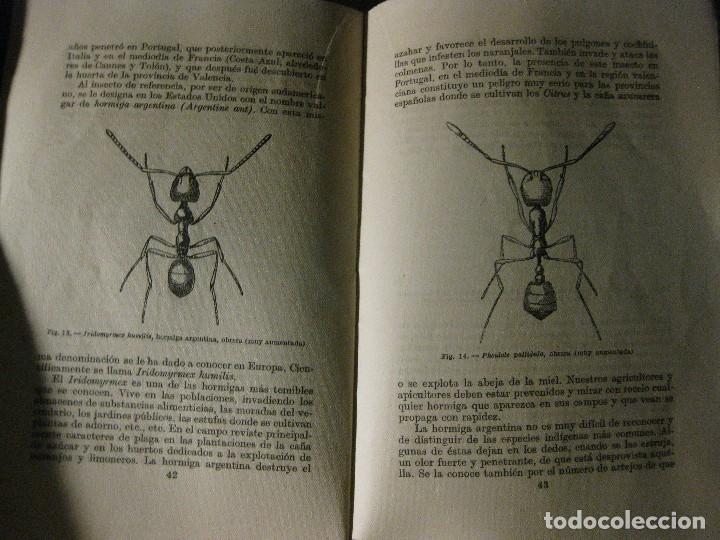 Libros antiguos: la lucha contra los insectos . ricardo garcia . espasa calve . serie V nº 9-10 año 1936 - Foto 2 - 125232319
