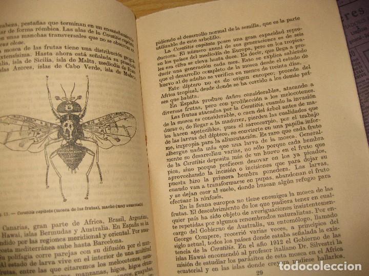 Libros antiguos: la lucha contra los insectos . ricardo garcia . espasa calve . serie V nº 9-10 año 1936 - Foto 3 - 125232319
