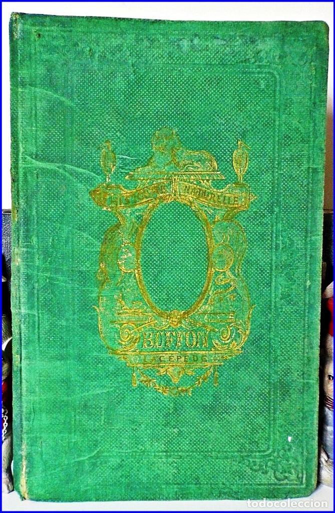 Libros antiguos: PRECIOSO LIBRO ILUSTRADO DEL SIGLO XIX DE 27 CM. BUFFÓN. ANIMALES SALVAJES. - Foto 3 - 125831979