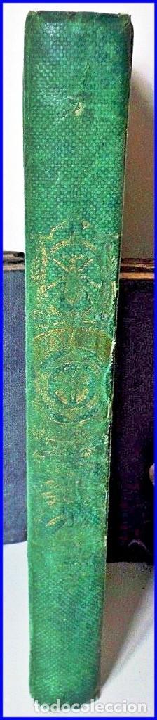 Libros antiguos: PRECIOSO LIBRO ILUSTRADO DEL SIGLO XIX DE 27 CM. BUFFÓN. ANIMALES SALVAJES. - Foto 4 - 125831979