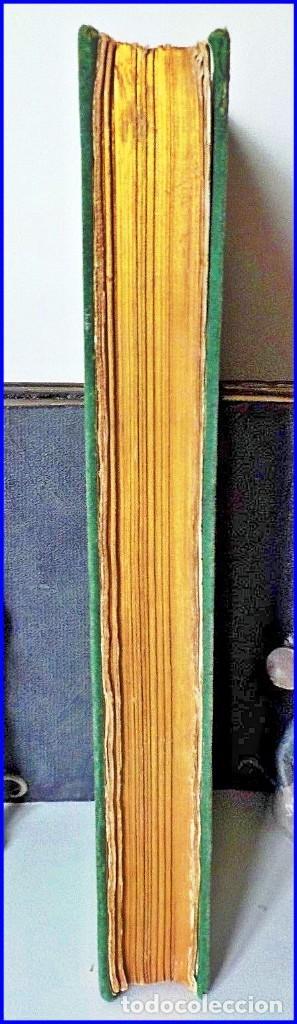 Libros antiguos: PRECIOSO LIBRO ILUSTRADO DEL SIGLO XIX DE 27 CM. BUFFÓN. ANIMALES SALVAJES. - Foto 5 - 125831979
