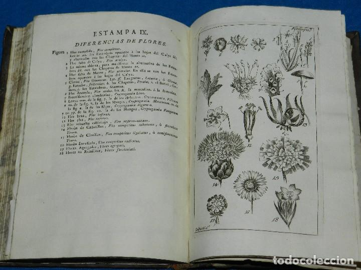 Alte Bücher: (MF) MIGUEL BARNADES - PRINCIPIOS DE BOTANICA SACADOS DE LOS MEJORES ESCRITORES, 1767 MADRID - Foto 3 - 125952059