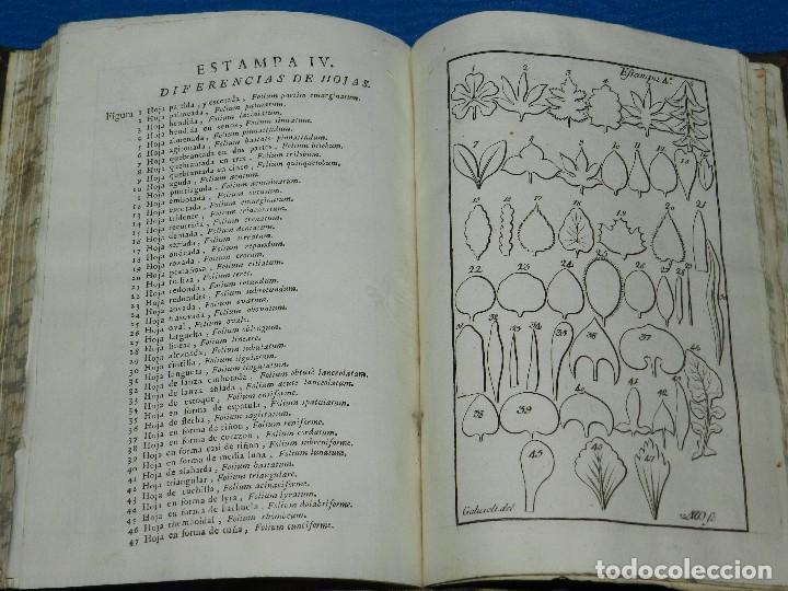 Alte Bücher: (MF) MIGUEL BARNADES - PRINCIPIOS DE BOTANICA SACADOS DE LOS MEJORES ESCRITORES, 1767 MADRID - Foto 5 - 125952059