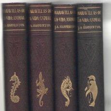 Libros antiguos: NUMULITE L0139 MARAVILLAS DE LA VIDA ANIMAL J. A. HAMMERTON JOAQUIN GIL EDITOR 1930. Lote 126316451