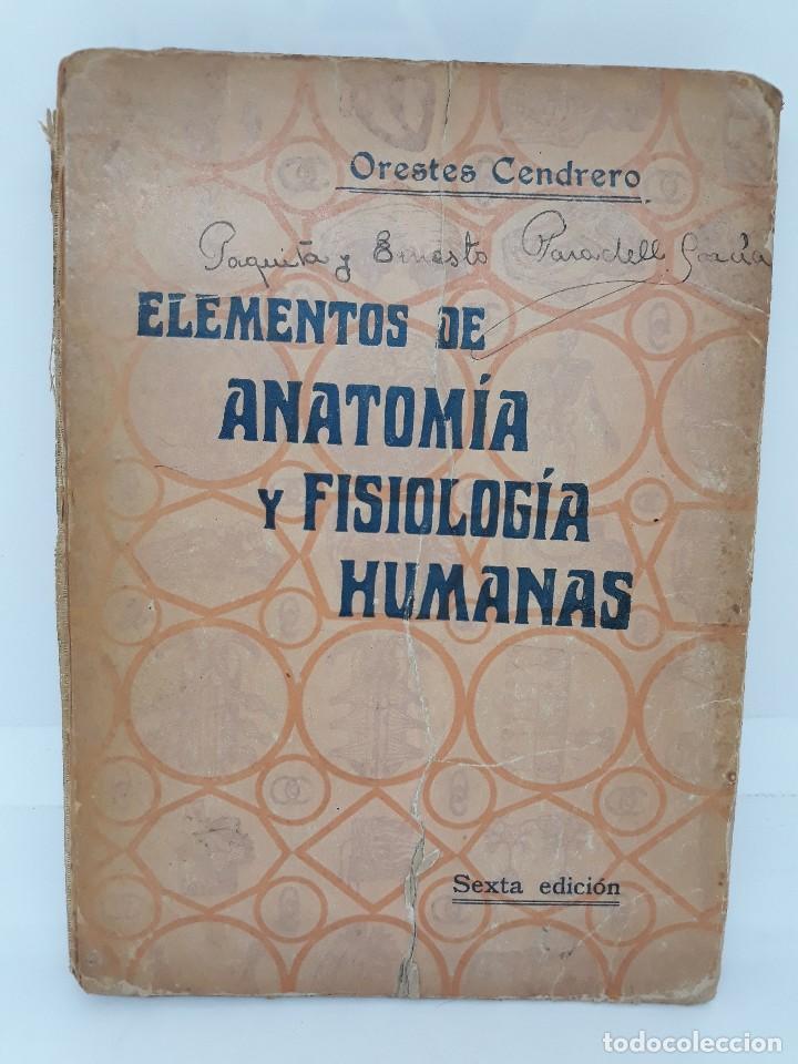 Dorable Saladino Anatomía Y Fisiología 7ª Edición Regalo - Anatomía ...