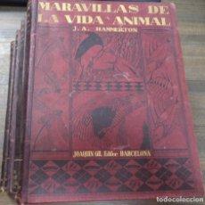 Libros antiguos: MARAVILLAS DE LA VIDA ANIMAL. J. A. HAMMERTON. JOAQUIN GIL EDITOR. OBRA EN 4 TOMOS. 1930.. Lote 127055939