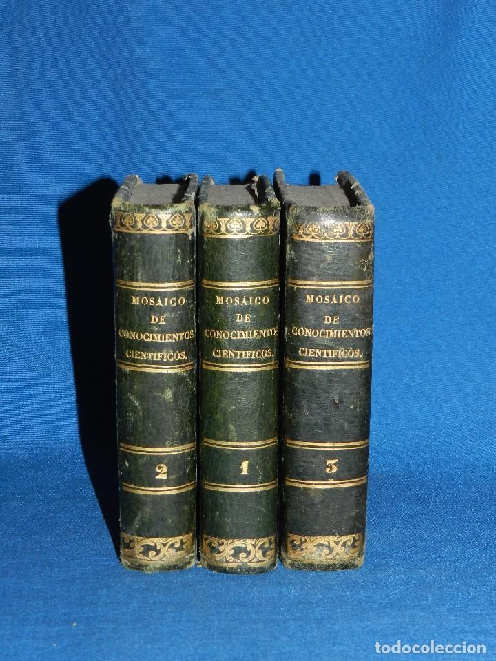 Libros antiguos: (MF) M. L .- MOSAICO DE CONOCIMIENTOS CINTIFICOS 1842 ASTRONOMIA , HISTORIA NATURAL , GEOGRAFIA - Foto 7 - 127303967
