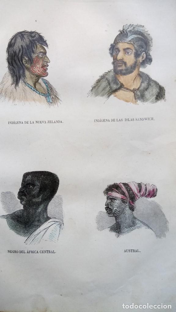 Libros antiguos: LIBRO,LOS TRES REINOS DE LA NATURALEZA,AÑO 1852,BUFFON,TOMO I,DIBUJOS ILUMINADOS ANIMALES Y HOMBRES - Foto 8 - 127894075