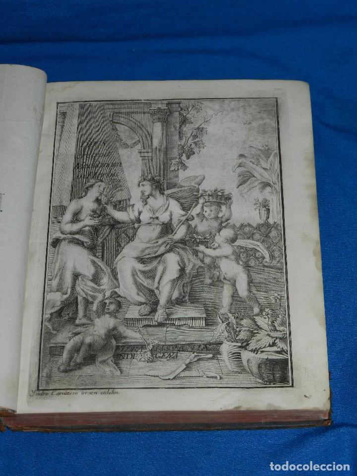 Libros antiguos: (MF) D JOSEPH QUER - FLORA ESPAÑOLA O HISTORIA DE LAS PLANTAS QUE SE CRIAN EN ESPAÑA , IBARRA 1762 - Foto 2 - 128422803