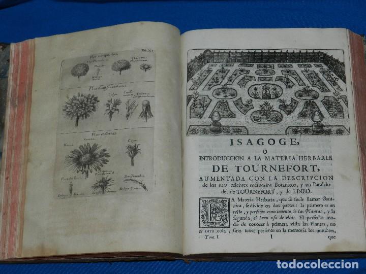 Libros antiguos: (MF) D JOSEPH QUER - FLORA ESPAÑOLA O HISTORIA DE LAS PLANTAS QUE SE CRIAN EN ESPAÑA , IBARRA 1762 - Foto 9 - 128422803