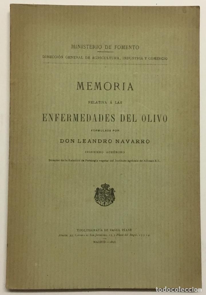 MEMORIA RELATIVA A LAS ENFERMEDADES DEL OLIVO. - NAVARRO, LEANDRO. MADRID, 1898. (Libros Antiguos, Raros y Curiosos - Ciencias, Manuales y Oficios - Bilogía y Botánica)