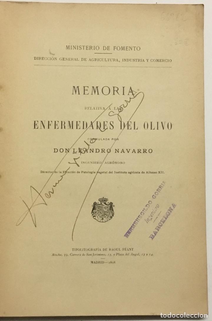 Libros antiguos: MEMORIA RELATIVA A LAS ENFERMEDADES DEL OLIVO. - NAVARRO, Leandro. MADRID, 1898. - Foto 2 - 123222798