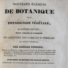 Libros antiguos: NOUVEAUX ÉLÉMENS DE BOTANIQUE ET DE PHYSIOLOGIE VÉGÉTALE. - RICHARD, ACHILLE. PARIS, 1828.. Lote 123237155