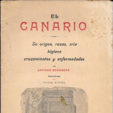 Livros antigos: ANTONIO RECASENS. EL CANARIO, SU ORIGEN, RAZAS, CRÍA, HIGIENE, CRUZAMIENTOS Y ENFERMEDADES. 1931. Lote 128874983
