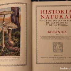 Libros antiguos: HISTORIA NATURAL , BOTANICA,INSTITUTO GALLACH 1º EDICION 1926. Lote 128882358